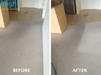 carpet-cleaning-brisbane-2